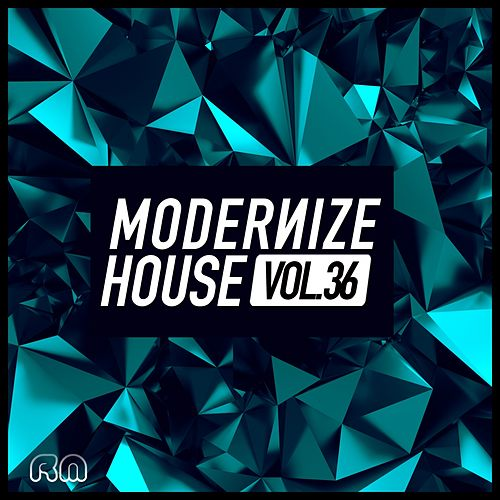 Modernize House Vol. 36 di Various Artists