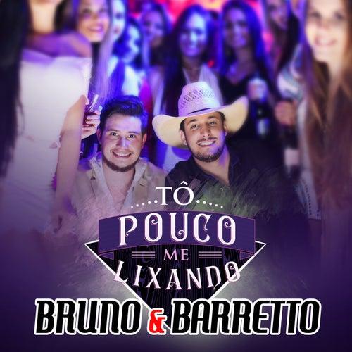 Tô Pouco Me Lixando by Bruno & Barretto