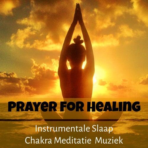 Prayer For Healing - Instrumentale Chakra Meditatie Slaap Muziek voor Dagelijkse Meditatie Geluid Therapie by Baby Sleep Sleep