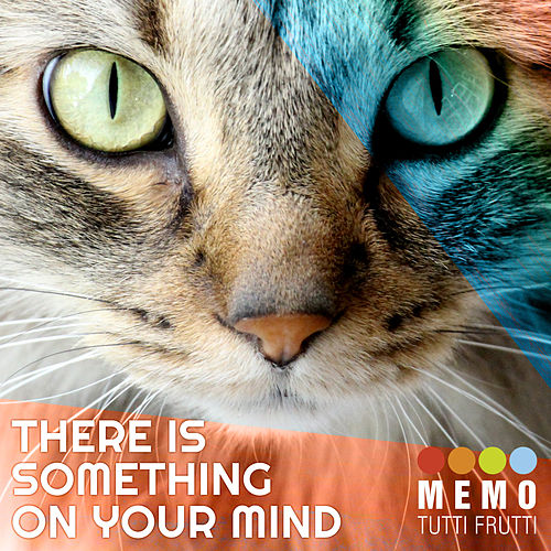 There Is Something On Your Mind de Various Artists