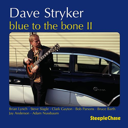 Blue to the Bone II de Dave Stryker