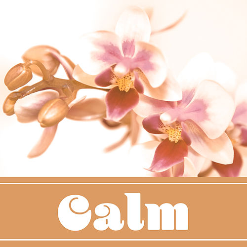 Calm – New Age, Music for Relaxation, Meditation Music, Calming Songs for Massage, Relax Trip de Massage Tribe