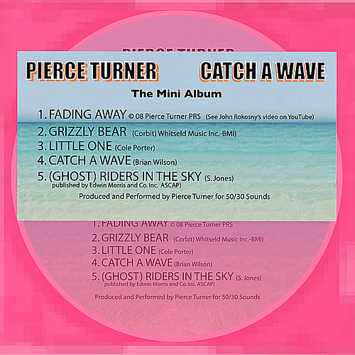 Catch a Wave von Pierce Turner