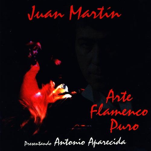 Arte Flamenco Puro by Juan Martin