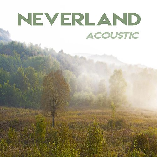 Neverland (Acoustic Version) [feat. Chris Burke] by Zaydro