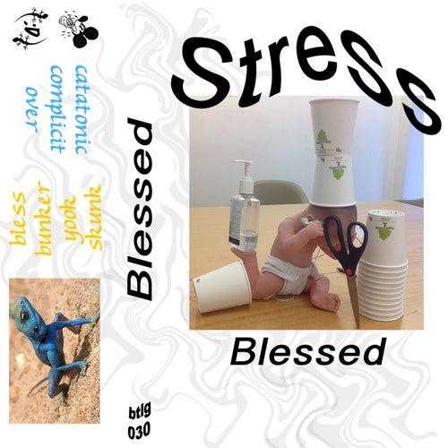 Stress de Stress