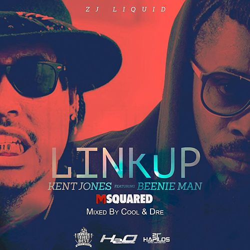 Link Up (feat. Kent Jones & Beenie Man) by Zj Liquid
