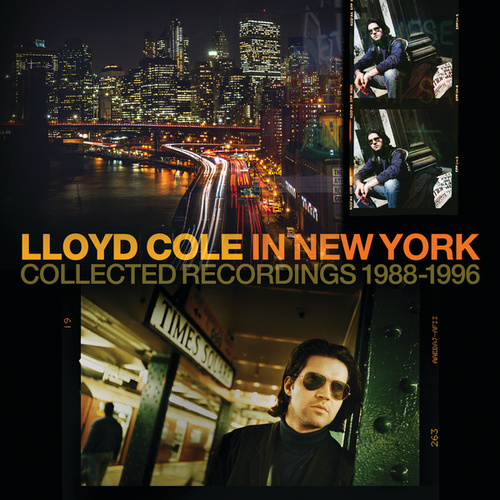 The One You Never Had (Demo) de Lloyd Cole