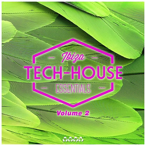 Tech-House Ibiza Essentials, Vol. 2 von Various Artists