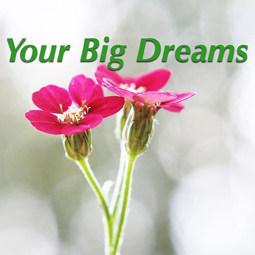 Your Big Dreams by Various Artists
