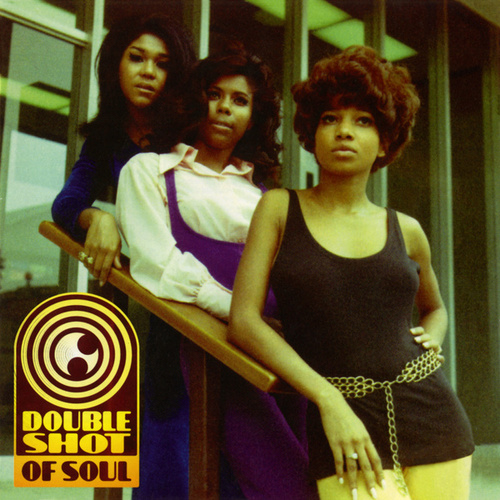 Double Shot Of Soul by Various Artists