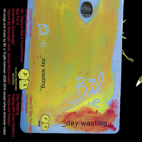 _Day Wasting_ by Bile