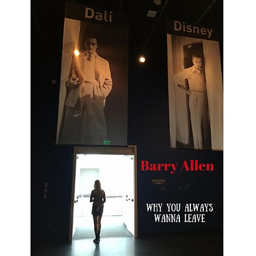 Why You Always Wanna Leave by Barry Allen