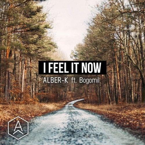 I Feel It Now (feat. Bogomil) von Alberk