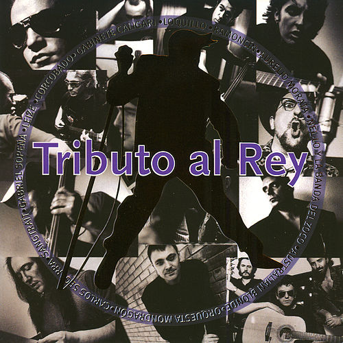 Tributo al rey by Various Artists