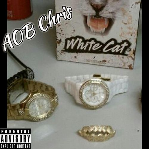 Whole Box of White Cats by Aob Chris
