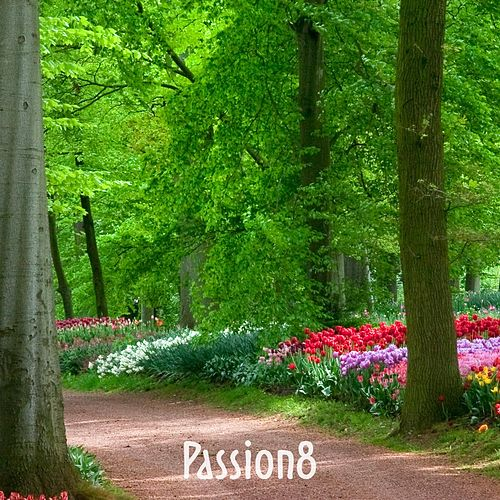 Passion8 by Illogical Operetta