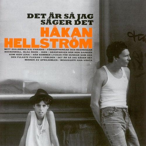 Det Är Så Jag Säger Det de Håkan Hellström