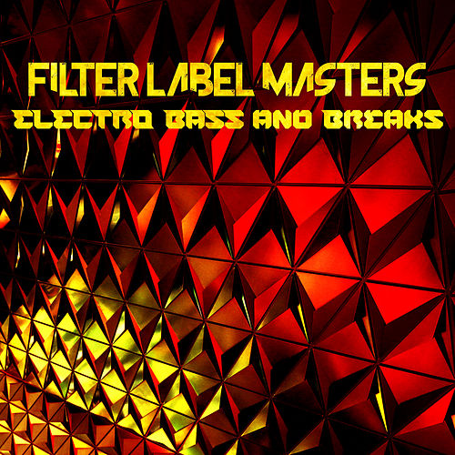 Filter Label Masters: Electro, Bass and Breaks de Various Artists
