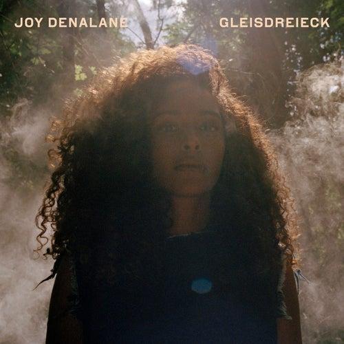 Gleisdreieck (Deluxe Edition) von Joy Denalane