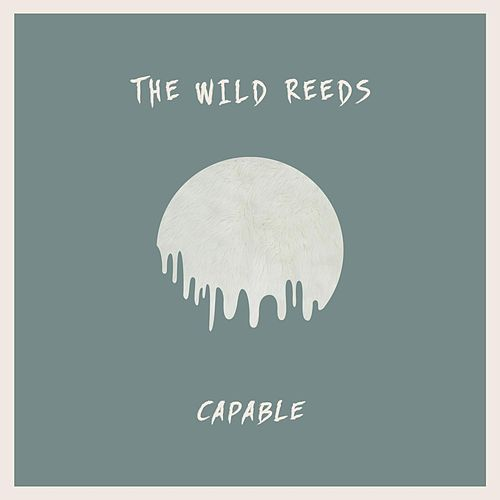 Capable by The Wild Reeds