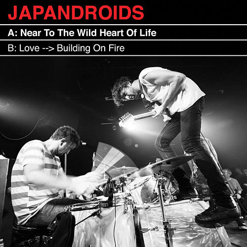 Near To The Wild Heart Of Life by Japandroids