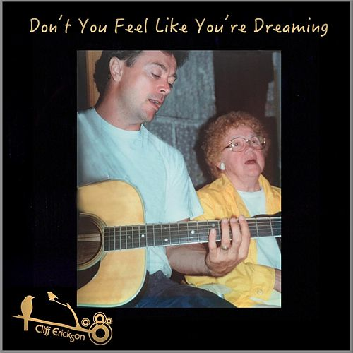 Don't You Feel Like You're Dreaming de Cliff  Erickson