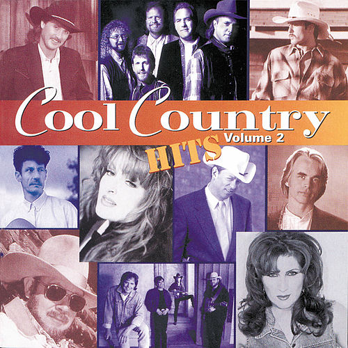 Cool Country Hits Vol. 2 de Various Artists