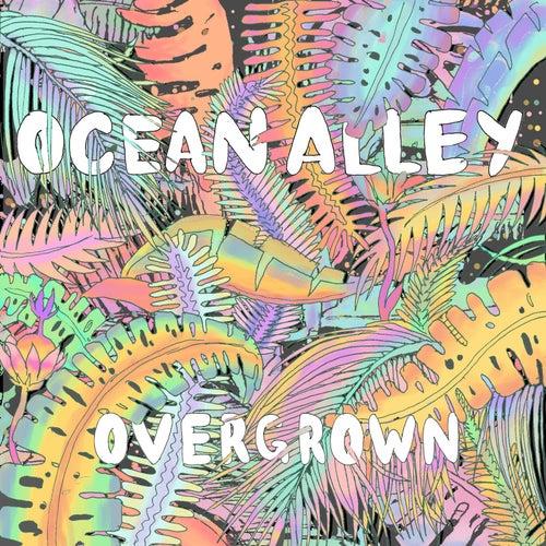 Overgrown by Ocean Alley
