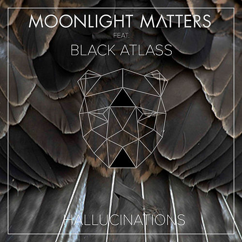 Hallucinations von Moonlight Matters