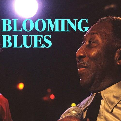 Blooming Blues de Various Artists