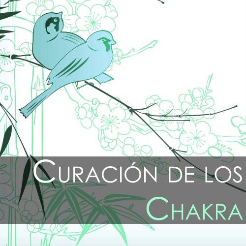 Curación de los Chakra - Mejor Musica de Meditacion para Sanar el Alma, Hatha Yoga Kundalini von El Alma