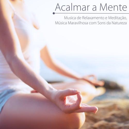 Acalmar a Mente - Musica de Relaxamento e Meditação, Música Maravilhosa com Sons da Natureza von El Alma