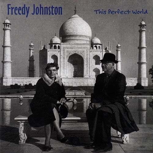 This Perfect World by Freedy Johnston
