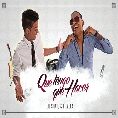 Que Tengo Que Hacer by Lil Silvio & El Vega
