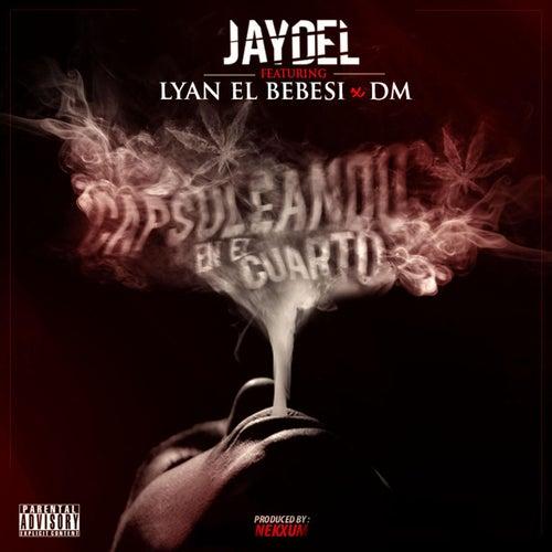 Capsuleando En El Cuarto (feat. Lyan El Bebesi & Dm) by Jaydel