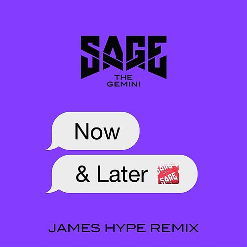 Now and Later (James Hype Remix) de Sage The Gemini