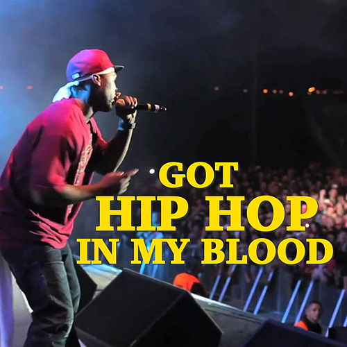 Got Hip Hop In My Blood de Various Artists