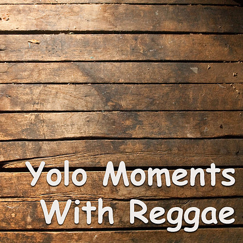 YOLO Moments With Reggae by Various Artists