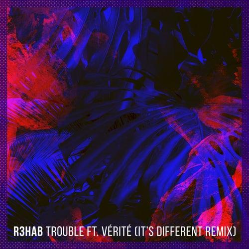 Trouble (It's Different Remix) von R3HAB
