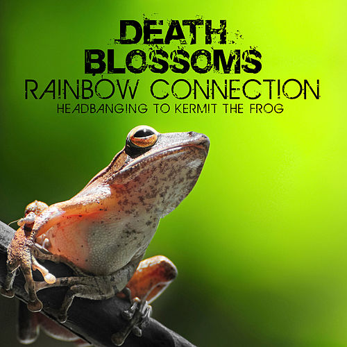 Rainbow Connection – Headbanging to Kermit The Frog di Death Blossoms