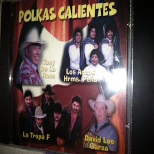 Polkas Calientes de Various Artists