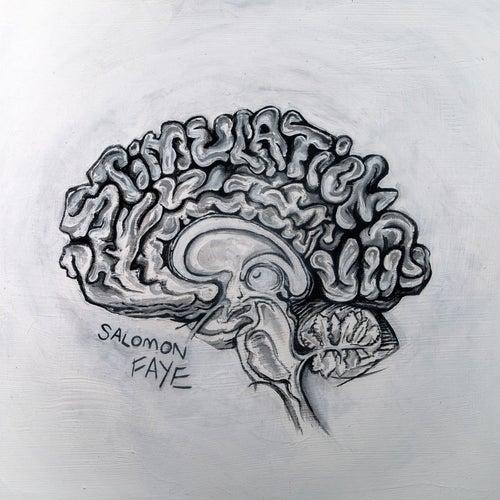 Stimulation von Salomon Faye