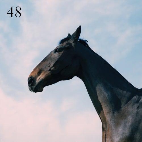 48 von Moss Kena