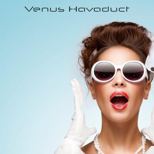 Venus Havaduct de Venus Havaduct