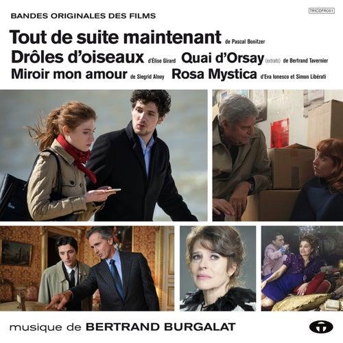 Drôles d'oiseaux et autres musiques de films de Bertrand Burgalat