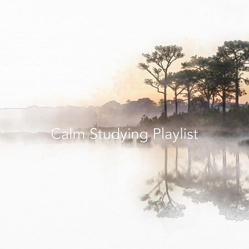 Calm Studying Playlist von Various Artists