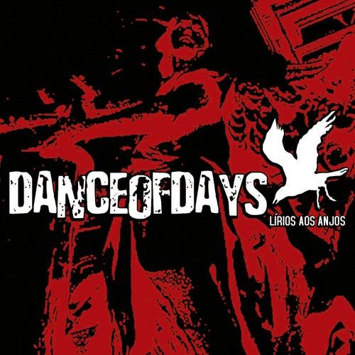 Lírios aos Anjos de Dance of Days