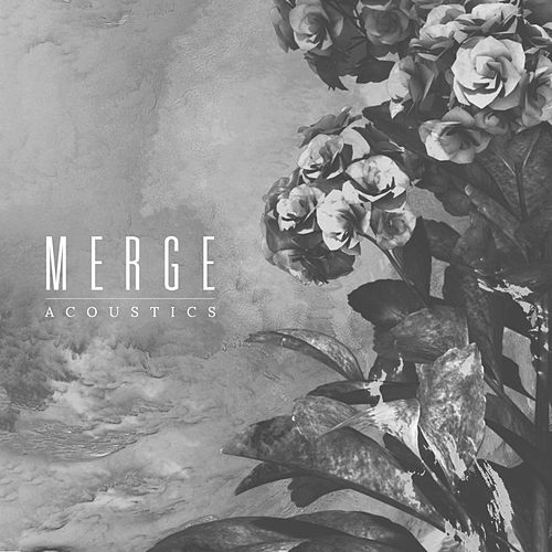 Ineffable Acoustics von Merge