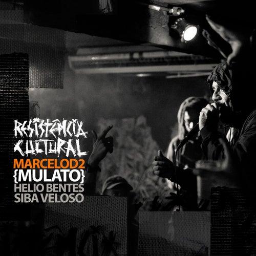 Resistência Cultural de Marcelo D2